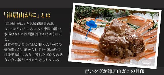 「津居山ガニ」とは。「津居山がに」とは城崎温泉の北3kmほどのところにある津居山港で水揚げされた松葉蟹(ずわいがに)のこと。良質の蟹が育つ条件が揃った「かにの好漁場」が、港からわずか40km程の丹後半島沖にあり、獲れたばかりの活きの良い蟹がセリにかけられている。。